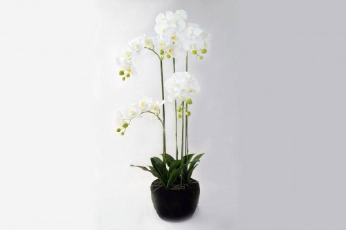 Pianta Orchidea Phalaenopsis a 39 Fiori Artificiale Real Touch Altezza 115 cm