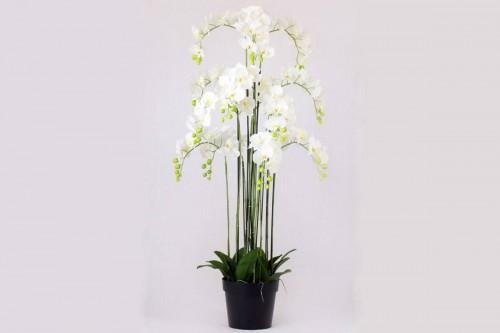 Pianta Orchidea Phalaenopsis a 103 Fiori Artificiale Real Touch Altezza 150 cm