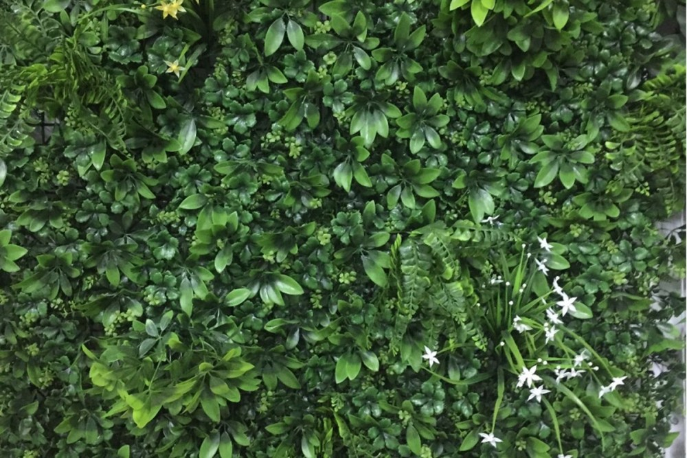 parete vegetale 01