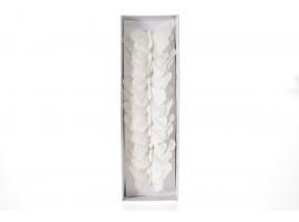 FARFALLE BIANCHE DECORATIVE | 10 cm